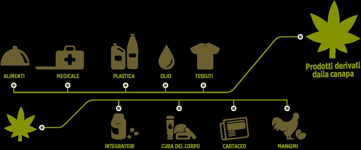 Prodotti derivati dalla canapa